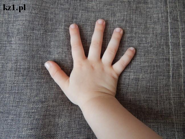 nazwy palców u dłoni ręki