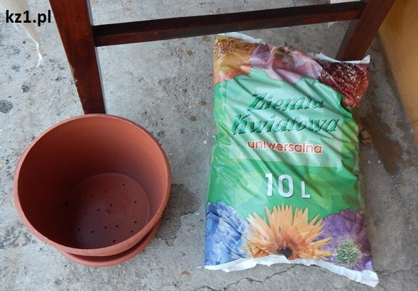 donica i czarna ziemia dla roślin doniczkowych