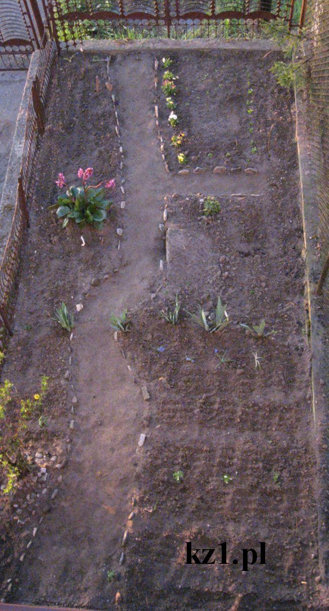 ścieżka wytyczona kamieniami