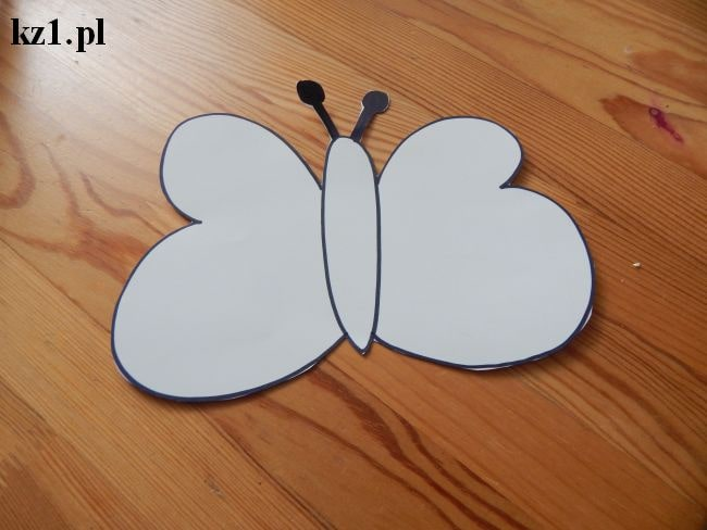 szablon motylka