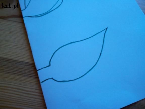szablon liścia