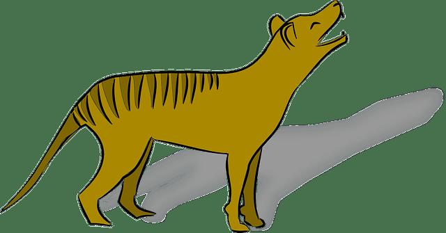 wilk workowaty wymarłe