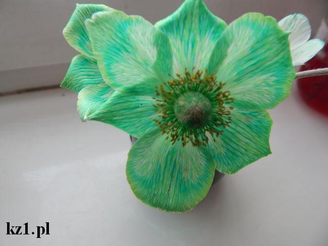 zielony kwiat