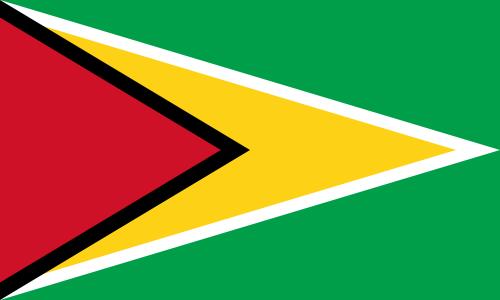 flaga gujany