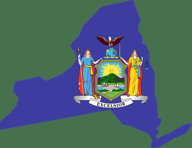 new york mapa