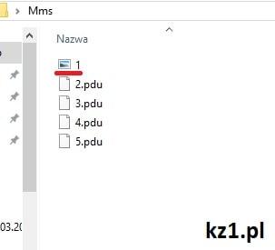 zmiana rozszerzenia pliku na jpg