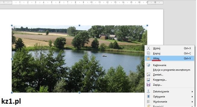 wklejanie obrazu z pliku pdf do worda