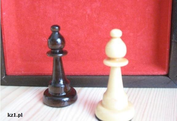 gońce szachowe