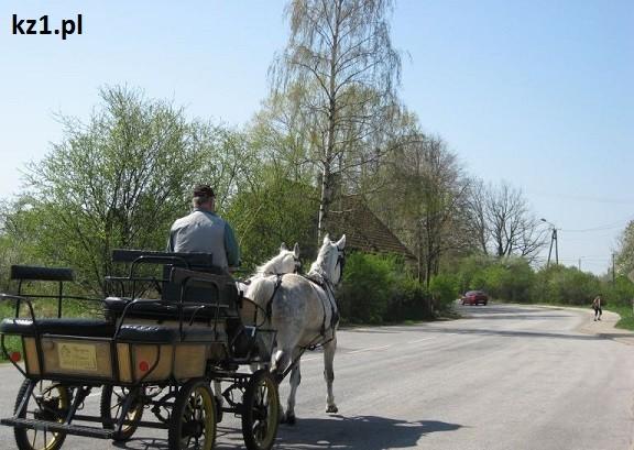 bryczka powóz konny