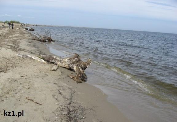 brzeg plaży