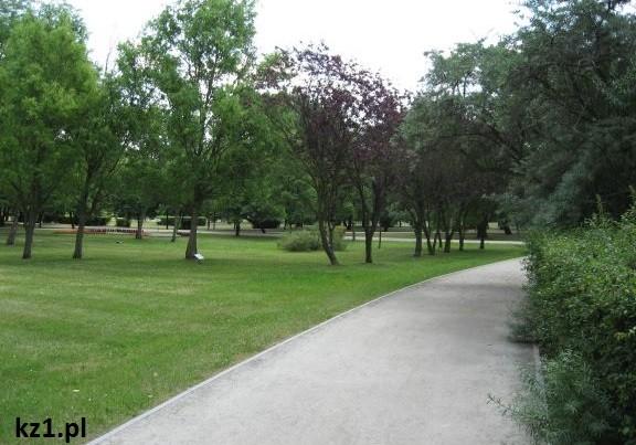 zdjęcie parku
