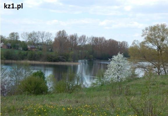 jezioro wiosna