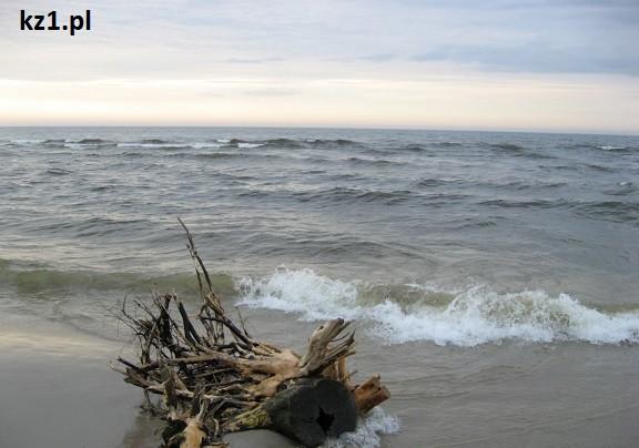 morze baltyckie w krynicy morskiej