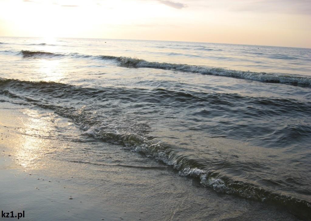 morze bałtyckie w stegnie