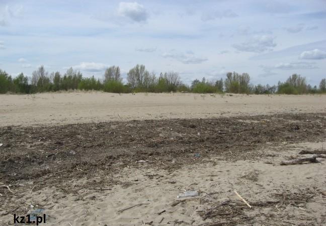 plaża mikoszewo