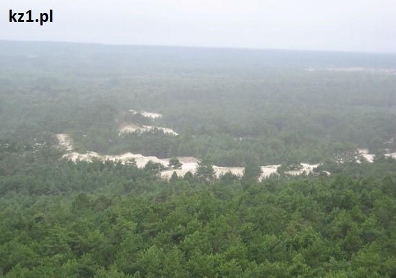 widok na wydmy