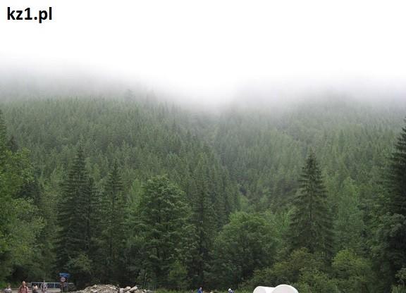 widok koło wodogrzmotów w górach