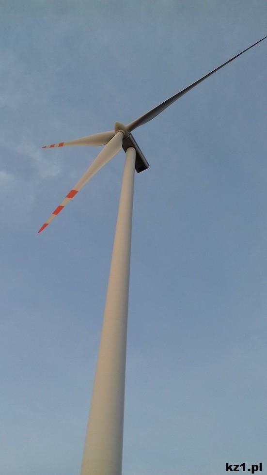 duża elektrownia wiatrowa